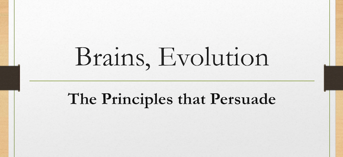 Brains, Evolution, Principles that Persuade